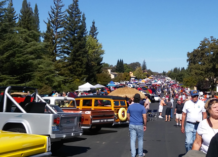 Crowd at the Cops & Rodders Show and Shine Fly-In