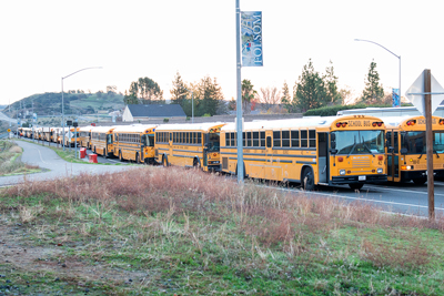 Buses lined up to transport runners at the CIM